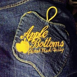 Apple Bottom Jean Skirt